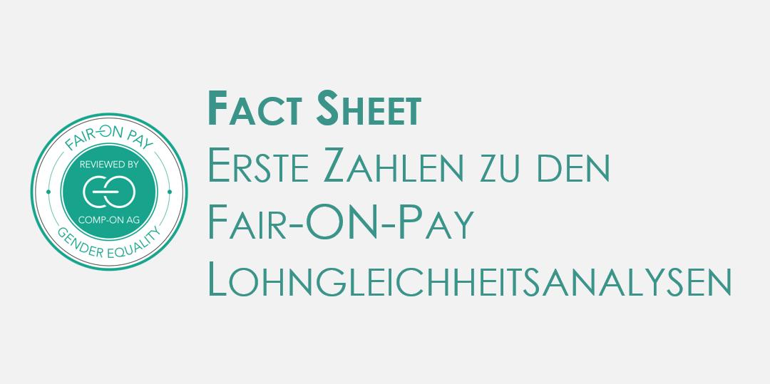 Fact Sheet Lohngleichheitsanalysen